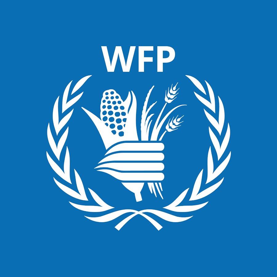 Agentura OSN z Říma hledá dobrou grafickou agenturu